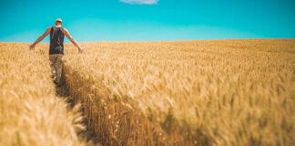 Leasing dla rolników
